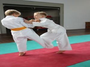 judo 20101113 1205157263