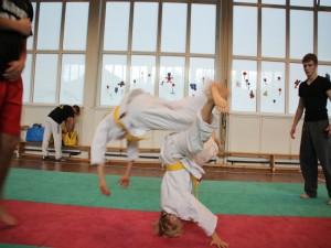 judo 20101113 1846589255